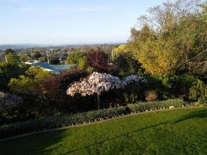 Home on the Hill, Bed and Breakfasts  Masterton - big - 8