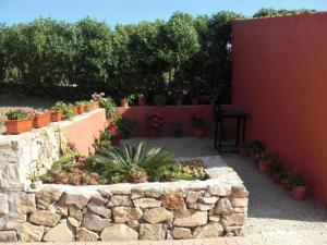 Rancho los transparentes, Prázdninové domy  Vejer de la Frontera - big - 45
