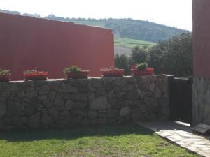 Rancho los transparentes, Prázdninové domy  Vejer de la Frontera - big - 52