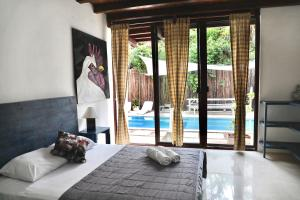 Residencia Gorila, Apartmanhotelek  Tulum - big - 75
