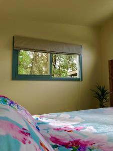 Siesta Cottage, Appartamenti  Lorne - big - 14