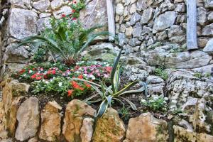 Casarufolo Paradise, Penziony  Sorrento - big - 36