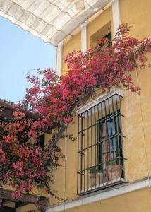 Hotel Las Casas de la Juderia (8 of 128)