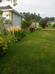 Riekkalansaari Cottage, Country houses  Sortavala - big - 25