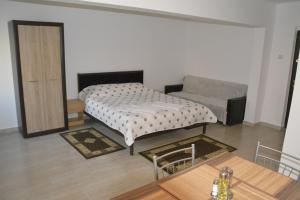 Casa BUCUR, Апартаменты  Тыргу-Окна - big - 4