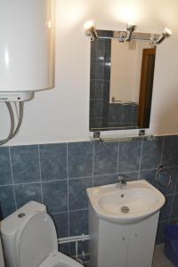 Casa BUCUR, Appartamenti  Tîrgu Ocna - big - 17