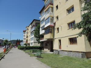 Casa BUCUR, Апартаменты  Тыргу-Окна - big - 15