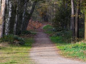 Maaspark Boschmolenplas 1, Ferienhäuser  Heel - big - 18