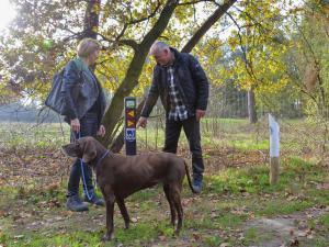 Maaspark Boschmolenplas 1, Ferienhäuser  Heel - big - 15