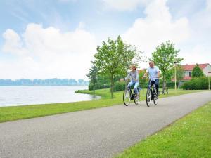 Maaspark Boschmolenplas 1, Dovolenkové domy  Heel - big - 5