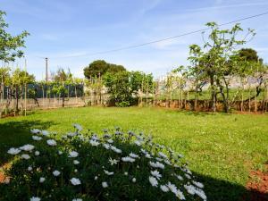 Apartment in Pula/Istrien 17400, Appartamenti  Veruda - big - 16