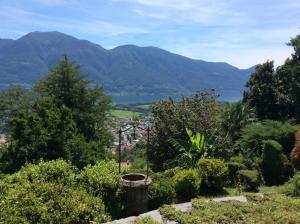 Bellaterra A, Holiday homes  Locarno - big - 14