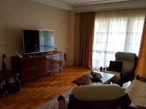 Vila Kraljevski 1, Appartamenti  Kumanovo - big - 23