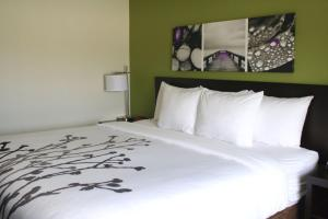 Sleep Inn & Suites Galion, Hotely  Galion - big - 5