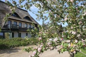 Kur-& Landhotel Borstel - Treff