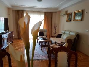 Vila Kraljevski 1, Appartamenti  Kumanovo - big - 32