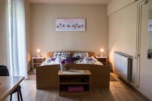 Guest House Tara, Affittacamere  Moravske-Toplice - big - 1