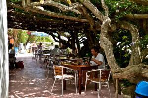 Hostal Alocs, Affittacamere  Playa d'Es Figueral - big - 22