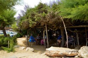 Hostal Alocs, Affittacamere  Playa d'Es Figueral - big - 20