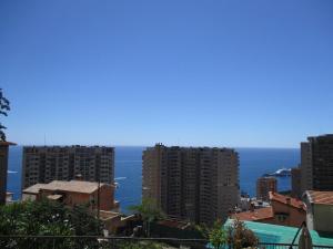 1Bedroom Apartment TOP OF MONACO with seaview