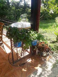 Guest House Danelia, Penziony  Martvili - big - 31