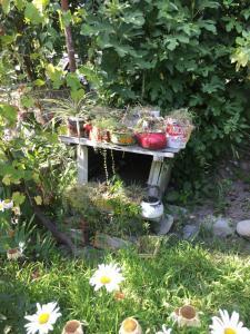 Ludwig Guesthouse, Penziony  Lagodekhi - big - 36