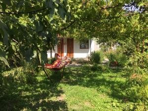 Ludwig Guesthouse, Penziony  Lagodekhi - big - 37