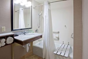 带浴缸的特大号床间 - 可供残疾人入住