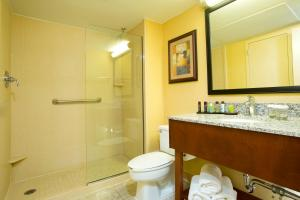 King Suite with Shower- Disability Access
