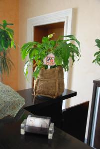 Hotel Gega, Hotels  Berat - big - 42