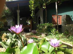 Sanjana Home Stay, Guest houses  Habarana - big - 95