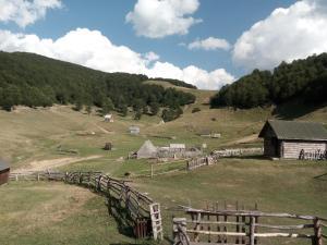 Chalet Scepanovic, Horské chaty  Kolašin - big - 29