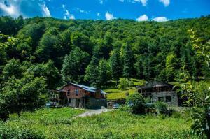 Korsha Guesthouse - Roshka