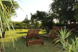 B&B Torre Di Cicala, Bed and Breakfasts  Partinico - big - 20