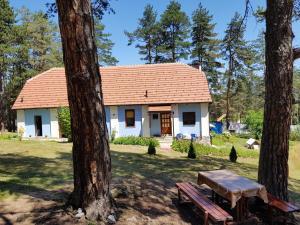 Apartman Zlatiborsko jezero, Apartmanok  Zlatibor - big - 1