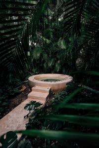 Hacienda San José (38 of 83)