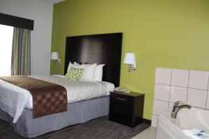 Best Western Magnolia Inn and Suites, Hotely  Ladson - big - 45