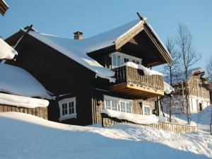 Holiday home Rauland Holtardalen, Ferienhäuser  Torvetjørn - big - 17