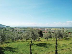 Holiday Home Casa il Colle - 01, Case vacanze  Cortona - big - 18