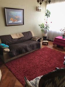 Departamento VPR 560 Valdivia, Apartmanok  Valdivia - big - 1