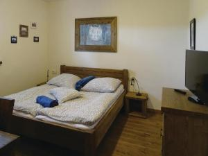 Studio Moravske Toplice with an Outdoor Swimming Pool 08, Apartmány  Moravske Toplice - big - 8