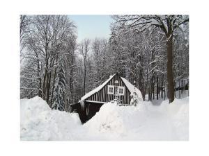 3 hvězdičkový chata Holiday home Paseky Havírna Česko