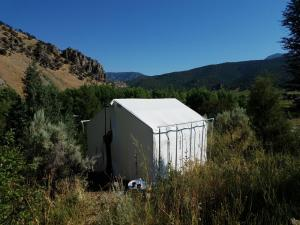 Bristol Cabins & Tents, Chaty  Lava Hot Springs - big - 19