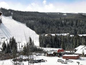 Keystone Resort by Rocky Mountain Resort Management, Apartmány  Keystone - big - 13