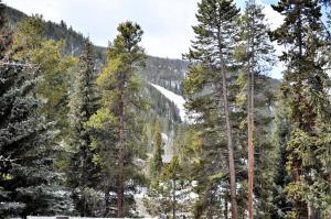 Keystone Resort by Rocky Mountain Resort Management, Apartmány  Keystone - big - 181
