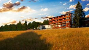 Berghof Fetz, Hotel  Schwarzenberg im Bregenzerwald - big - 10