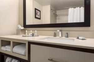 DoubleTree by Hilton Milwaukee/Brookfield, Hotels  Brookfield - big - 10