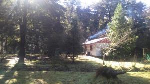 Parcela Didita, Case vacanze  Villarrica - big - 19
