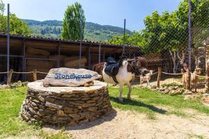 Byipek FarmHouse (Ciftlik Evi), Pensionen  Selcuk - big - 66
