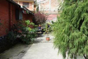 Bodhi Guest House, Affittacamere  Baudhatinchule - big - 26